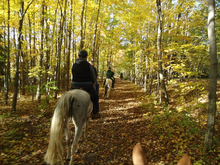 Painted Bar Stables Trail Ride